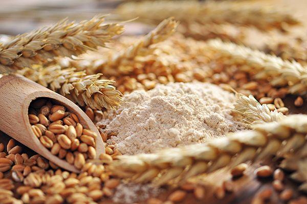 2partes-del-grano-de-trigo-entreharinas-revista-love-talavera