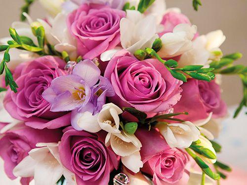 floristeriaclio-flores-dic15
