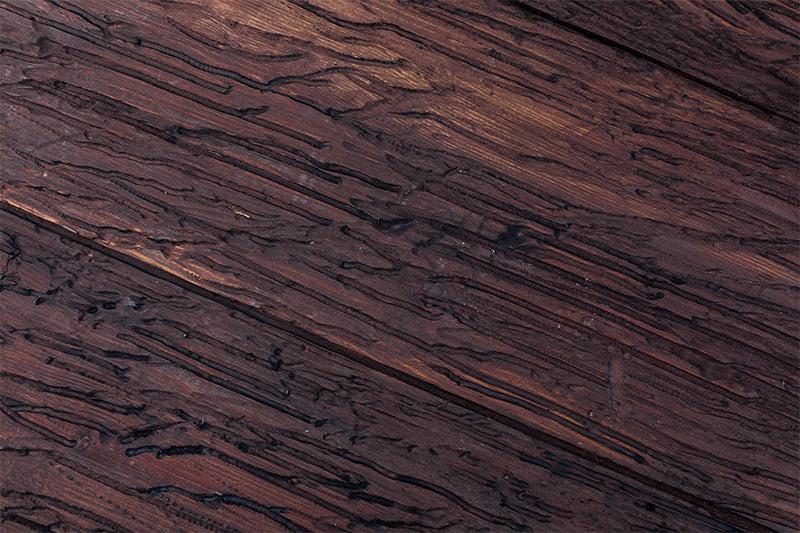 madera-infectada-de-carcoma-solucion-para-evitar-carcoma-revista-love-talavera
