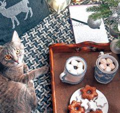 mascotas-alimentos-prohibidos-navidad-revista-love-talavera