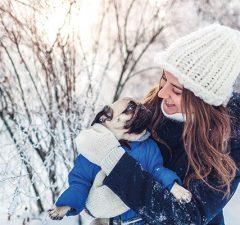mascotas-prevenir-frio-lovetalavera-perros-talaveradelareina-revistalove-revistatalavera