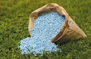nutrientes-abono-revista-love-talavera