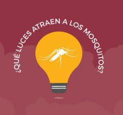 reaccion-de-los-mosquitos-frente-a-diferentes-colores-de-iluminacion